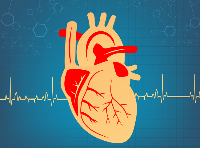 What Are Your Ideal Test Scores For Cardiovascular Health