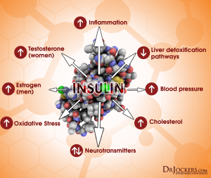 DIABETES_InsulinChart